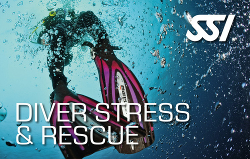 Stress & Rescue (inkl. React Right) - monte mare Rheinbach